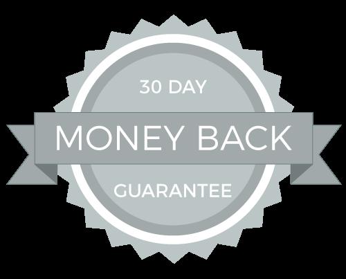 seo-money-back